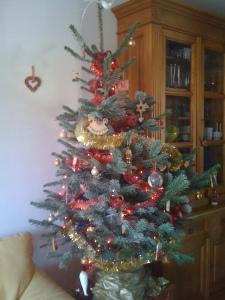 [Bilan] Noël 2010 - Sapin de noël