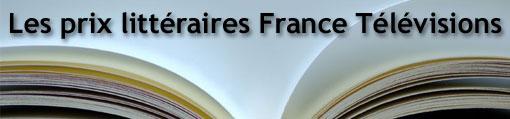 France Télévisions  - Roman