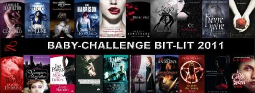 [Challenge] Bit-lit 2011
