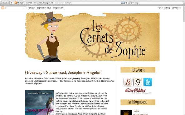 [Partenaire] Les carnets de Sophie - Site