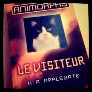 [Photo] Animorphs 2