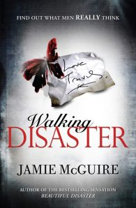 [Livre] Beautiful disaster 2